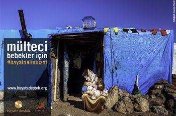 Mülteci bebekler için adım adım bağış