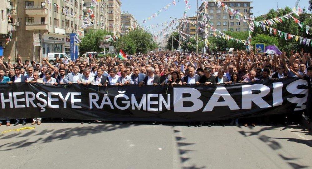 Çözüm sürecinden referanduma : Diyarbakır'ın yeni anayasadan beklentileri
