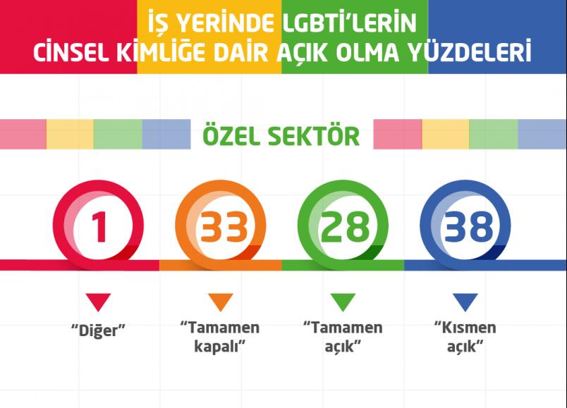 Kaos GL LGBTİ çalışanların yaşadıklarını inografikle anlattı