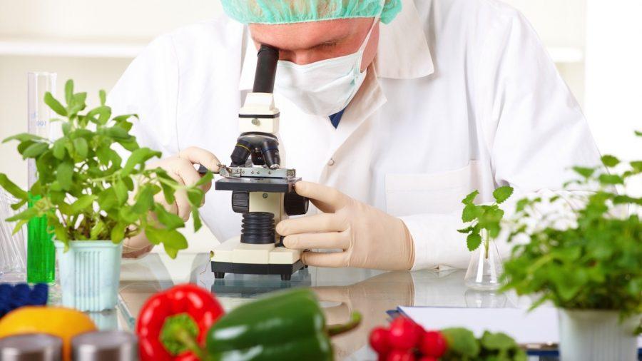 gıda-lab-e1493716448530.jpg