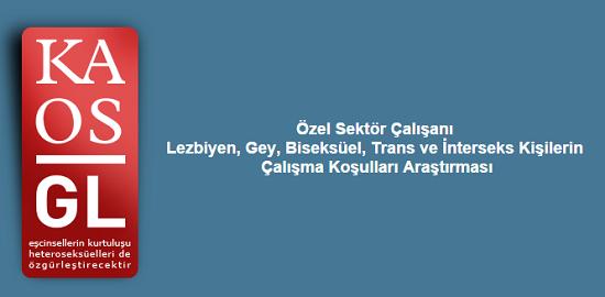 Özel Sektör Çalışanı LGBTİ'ler Anketi