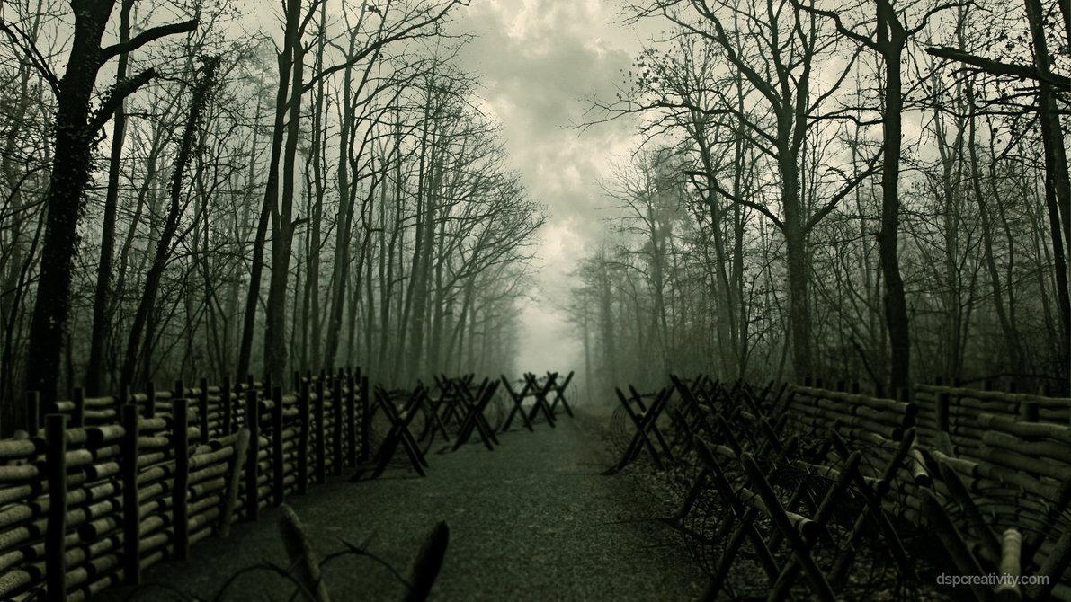 Yaşadıklarımızı anlamlandırmak için ormanı görebilmenin sihri
