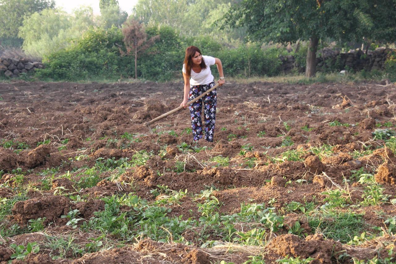 KHK ile ihracın ardından tarıma yönelen tekniker Rozerin Çatak: Kapitalist sistemden kurtuldum