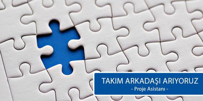 proje-asistanı-ilan-660x330.jpg