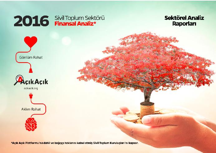 Sivil Toplum Kuruluşları'nın 2016 Yılı Finansal Analizi