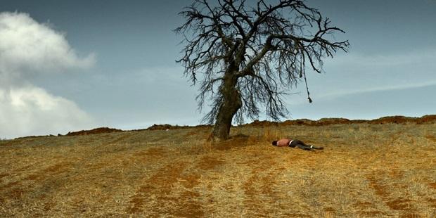 Nuri Bilge Ceylan'ın Ahlat Ağacı'na Hızlı Bir Bakış