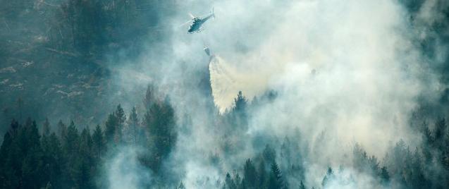 Avrupa, İklim Değişikliği Nedeniyle Çıkan Orman Yangınlarıyla Yanıyor