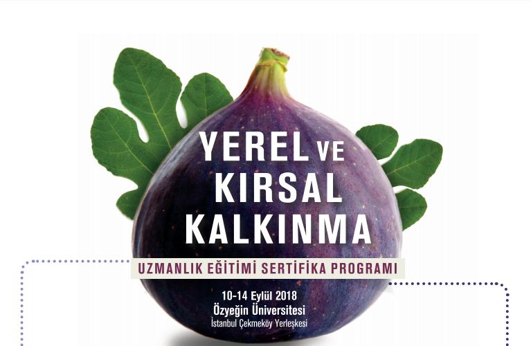 Yerel Ve Kırsal Kalkınma Uzmanlık Eğitimi Sertifika Programı