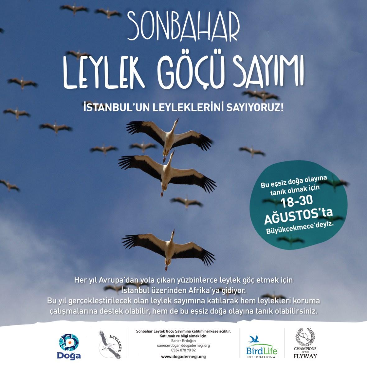 leylek-sayimi-facebook-1200x1200.jpg