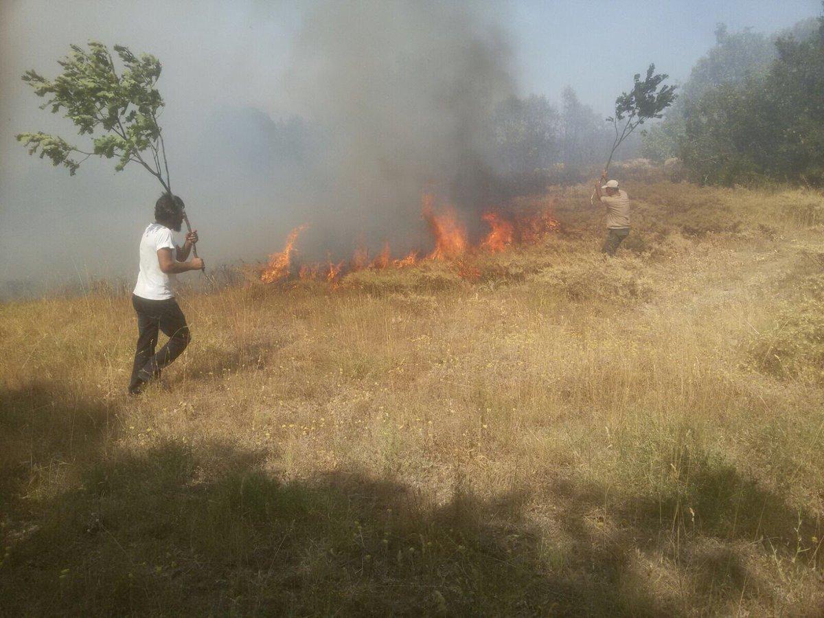 Dersim'e Geç Ulaşan Yanıt: Yangın Söndürüldü