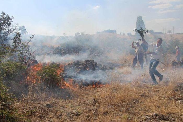 'Orman Yangınlarının Çıkartılması Ve Söndürülmemesi Ağır Hizmet Kusuru'