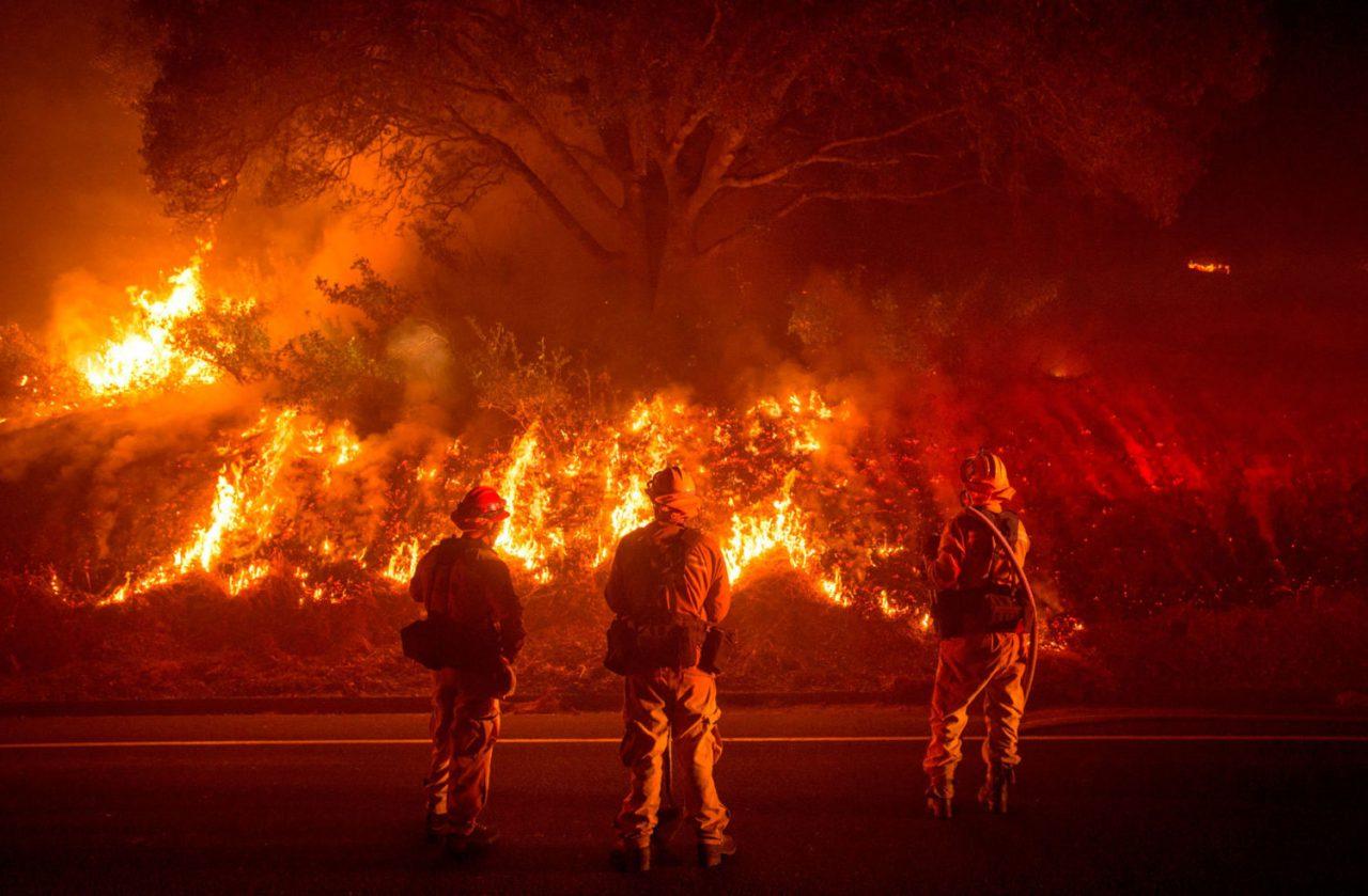 İklim Değişikliğinin Orman Yangınlarına Etkisi: Açılan Davalar
