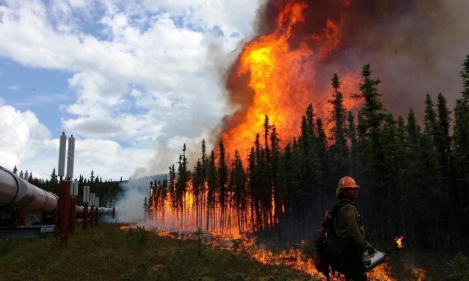 alaska-wildfire_0.jpg