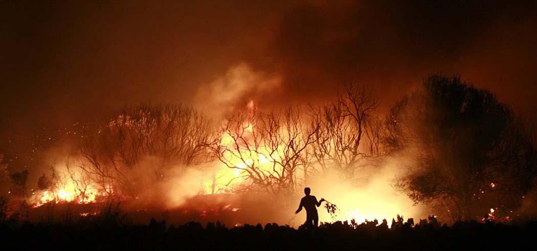Orman(cılık Politikası) Yangınları