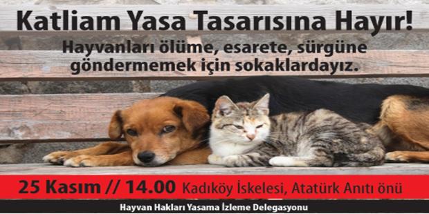 Sokak Hayvanları İçin Bu Pazar Kadıköy'e!..