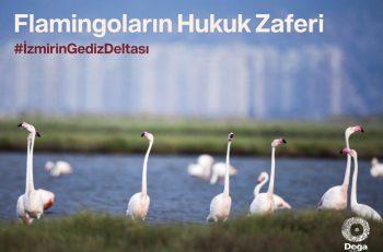 Flamingolar'ın Hukuk Zaferi: İzmir Körfez Geçişi Projesi Mahkeme Kararıyla İptal Edildi
