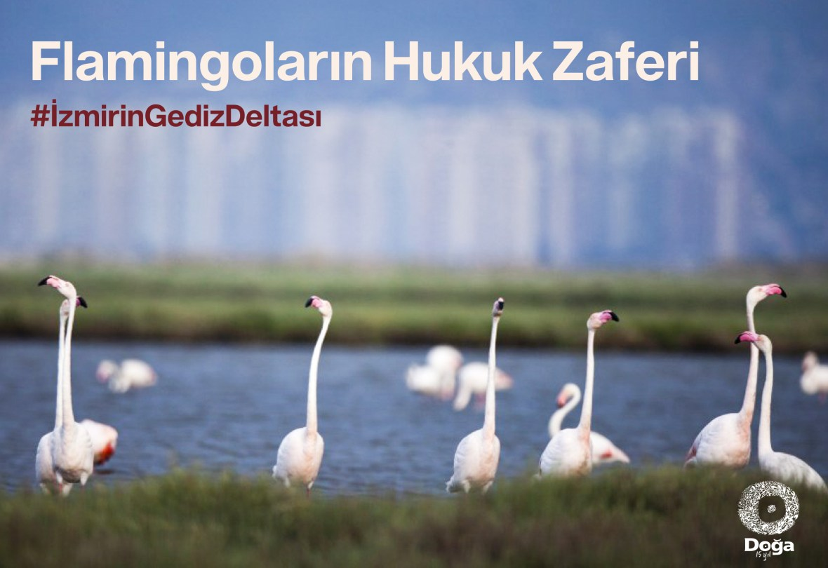 gediz-deltasi-1.jpg