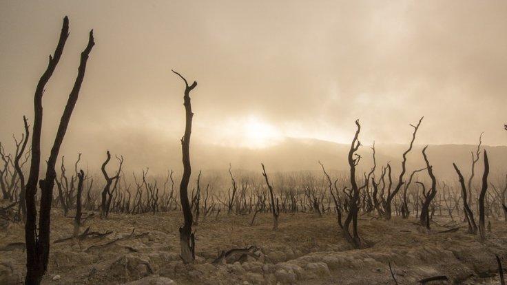 iklim-1.jpg