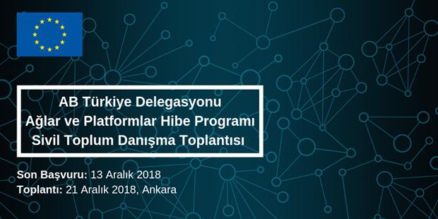 AB Türkiye Delegasyonu Ağlar ve Platformlar Hibe Programı Sivil Toplum Danışma Toplantısı