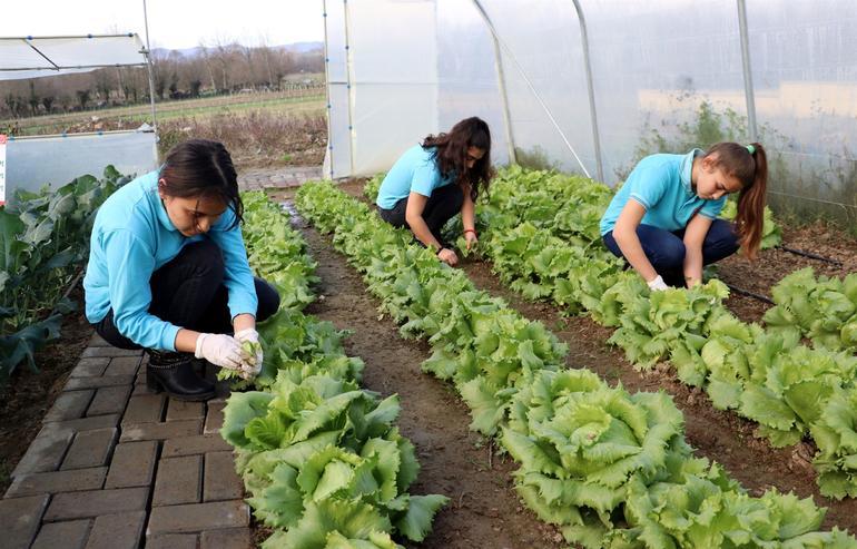 tarım-lisesi-yerli-tohum.jpg