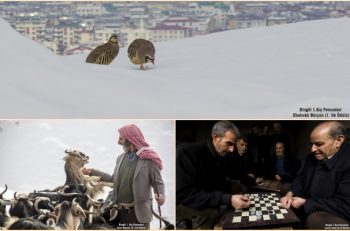 Bingöl 1. Kış Fotosafari Yarışmasında En İyiler Seçildi