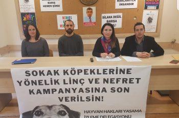 Sokak Köpeklerine Yönelik Nefret ve Linçe Son Verilsin Çağrısı Yapıldı