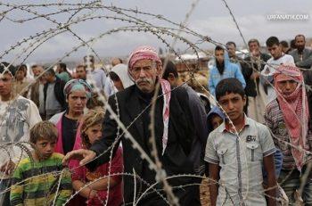 Şanlıurfa'da Mülteci Algısı…