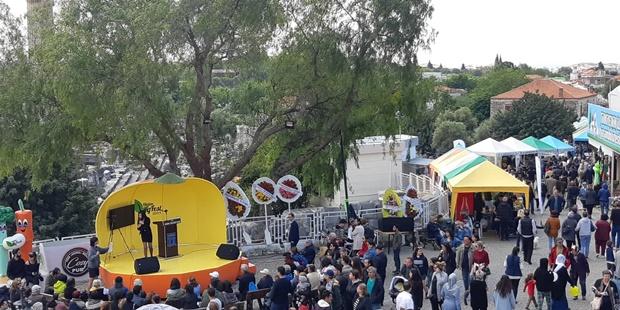 festival-genel.jpg