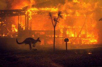 Avustralya'da Orman Yangını Krizi…