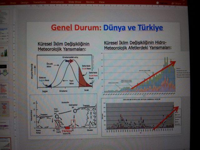 Dünya ve Türkiye'de genel durum