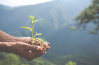 Kirazlıyayla Mücadelesi: Halk ve Doğa Sermayeye Karşı