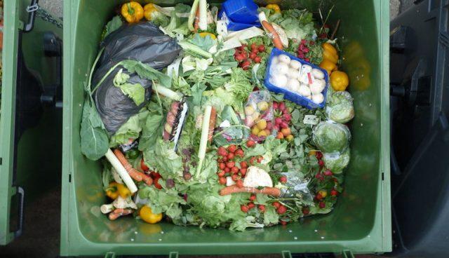 pandemide gıda tedariği