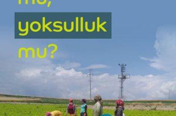 Kalkınma Atölyesi'nden Salgının Mevsimlik Tarım İşçilerine ve Bitkisel Üretime Etkisi Raporu
