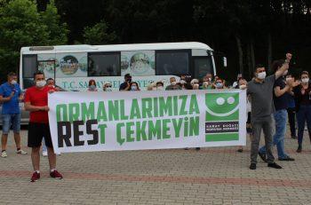 Trakya'nın Ormanları Yok Ediliyor, Yeni Proje RES'ler