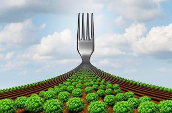 Gıda En Önemli Müşterektir