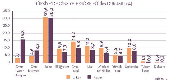 Türkiye'de cinsiyete göre eğitim durumu