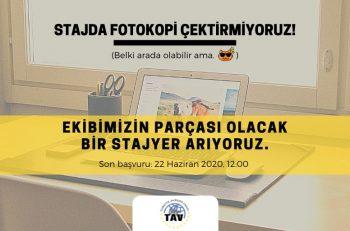 Türkiye Avrupa Vakfı Yaz Dönemi Staj Programı İçin Ekip Arkadaşı Arıyor