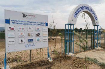 Türkiye'de Bir İlk: HAYTAP Emekli Hayvanlar Çiftliği