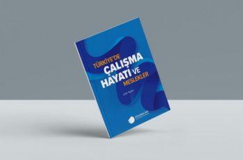 Türkiye'de Meslekler Ne Durumda?