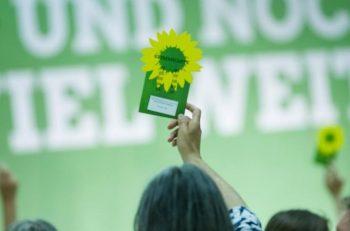 Yeşil Politika: Küçülme Merkezli, Refah ve Mutluluk Politikası