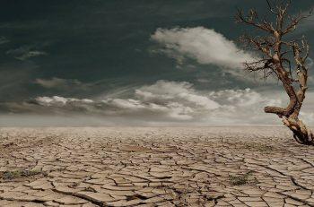 """""""Böyle Gidersek 30 Sene İçinde Su Fakiri Ülke Olacağız"""""""