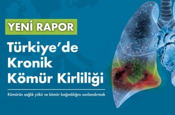 Türkiye'de Kömür Santrallerinin Yarattığı Sağlık Sorunlarının Maliyeti Sağlık Harcamalarının Üçte Biri