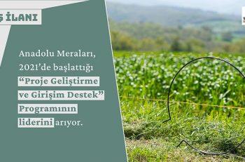 Anadolu Meraları Proje Geliştirme ve Girişim Destek Program Lideri Arıyor