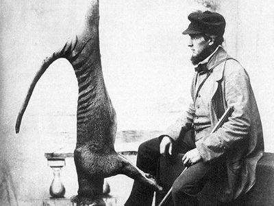 Avcı, öldürdüğü Tasmanya kaplanıyla poz veriyor, 1869, Avustralya Ulusal Müzesi (NMA) arşivi