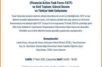 Mali Eylem Görev Gücü ve Sivil Toplum: Güncel Durum ve Türkiye'deki Gelişmeler Etkinliği