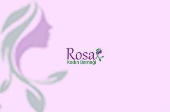 Diyarbakır'da Rosa Kadın Derneği'nin 3 Üyesi Dahil 22 Kadın Gözaltına Alındı