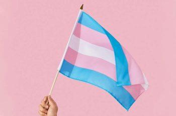 """""""Transları Koruyan Yasalar İvedilikle Oluşturulmalı"""""""