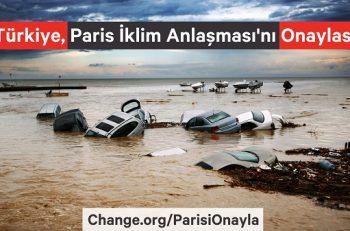 Sivil Toplum Türkiye'yi Küresel İklim Politikalarında Söz Sahibi Olmaya Çağırıyor!