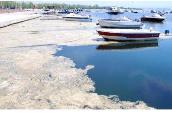 """""""Marmara Denizi 'Hassas Alan' İlan Edilmeli"""""""