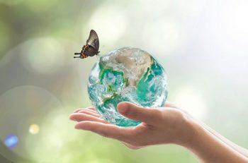 TEMA Vakfı'ndan A. Nihat Gökyiğit Biyolojik Çeşitlilik Projesi